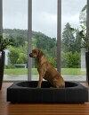 【smtb-s】【送料無料】ドイツ発最高級大型犬用ベッド【Cube・レザー】