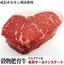 ウルグアイ産 極厚牛サーロインステーキ 約450g前後  『抗生物質使用0』