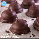 クリスマスケーキジョエルおいしいミルクチョコレート1kg業務用にもお使い頂けますコーティング【クール便選択可】