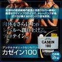【送料無料】アルプロン カゼイン100 カゼイン プロテイン 2kg【Alpron カゼインプロテイン トップアスリート カゼイン 粉末 プロテイン カゼイン】
