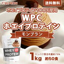 [送料無料&数量限定]アルプロン WPC ホエイプロテイン100 モンブラン 1kg(約50食)   正規品 ALPRON プロテイン whey たんぱく質 アミノ酸スコア100 筋トレ ダイエット プロテインダイエット 女性 男性 公式