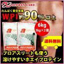 アルプロン -ALPRON- ホエイプロテイン(プレーン味)【3kg×2個セット】【アミノ酸スコア100】【送料無料】【パウダー 粉末 プロテイン WPI ホエイ】