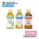 【伊藤園】2つの働き カテキン緑茶 カテキンジャスミン茶 カ...