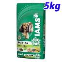 アイムス 成犬用 チキン 小粒 5kg (1歳から6歳の成犬用)