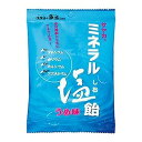 サンプラネット サヤカ ミネラル塩飴 うめ味 60g