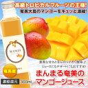 奄美大島 マンゴージュース 300ml まんまる工房 マンゴー 濃縮還元果実ジュース フルーツジュース ギフト