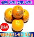 【予約】訳あり たんかん ご家庭用 5kg【送料無料】 奄美大島 タンカン (みかん) 果物 フルーツ オレンジ 詰め合わせ