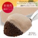 濃厚チョコレートケーキ たっぷりのチョコ生クリーム 3〜4人分 アマリア生ショコラ1本