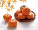 10月下旬より出荷開始★庄内柿(平核無柿)秀 約3.5kg M 40玉他の商品との同梱はできません