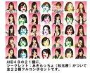 AKB48 × ぷっちょ ストラップ 全22種 フルコンプセット 新品