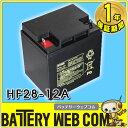 日本製 国産 HF28-12A 日立 ( 新神戸電機 )小型制御弁式鉛蓄電池 バッテリー UPS 無停電電源 CATV 防災 防犯システム機器 非常 灯 HF28ー12A 0824楽天カード分割