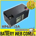 日本製 国産 HP65-12A 日立 日立化成 ( 新神戸電機 ) 小型制御弁式鉛蓄電池 バッテリー エレベーター UPS 無停電電源 防災 防犯システム機器 非常 灯 太陽光 ソーラー 発電 HP65ー12A