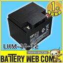日本製 国産 LHM38-12 日立 日立化成 ( 新神戸電機 ) 小型制御弁式鉛蓄電池 バッテリー UPS 無停電電源 防災 防犯システム機器 非常 灯 太陽光 ソーラー 発電 LHM38ー12