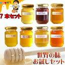 世界のはちみつ 日本製はちみつ お試しセット 非加熱 ハチミツ 天然はちみつ 125g 7本コンプリートセット アメリア お試し ハニー HONEY 蜂蜜 瓶詰 国産蜂蜜 国産ハチミツ 送料無料