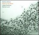 【メール便送料無料】Stefano Bollani / Stone In The Water (輸入盤CD) (ステファノ ボラーニ)
