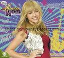 ハンナ・モンタナ (Hannah Montana)(2010年カレンダー)【★】