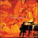 现代 - 【メール便送料無料】David Benoit / Fuzzy Logic (輸入盤CD) (デヴィッド・ベノワ)