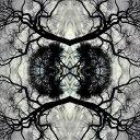 其它 - 【メール便送料無料】Adam Rudolph / Sonic Mandala Go: Organic Orchestra (輸入盤CD)(アダム・ルドルフ)