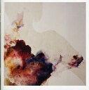 摇滚乐 - 【メール便送料無料】Admiral Fallow / Tree Bursts In Snow (輸入盤CD) (アドミラル・ファロー)