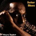 其它 - 【メール便送料無料】Wayne Bartlett / Senor Blues (輸入盤CD)(ウェイン・バートレット)