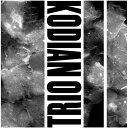 現代 - Kodian Trio / II【輸入盤LPレコード】【LP2018/1/5発売】