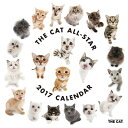 THE CAT ALL-STAR 2017年カレンダー[アーリスト]《取り寄せ※暫定》