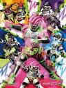 ジグソーパズル 仮面ライダーエグゼイド 108ラージピース (108-L572)[ショウワノート]《発売済・在庫品》
