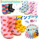 [free shipping] ☆ kids rain boots short length kids /kids/ youth / child / child shoes / boots / [smtb-KD] who can wear it with a blush lightweight by colorful POP