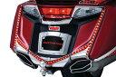 3245kuryakyn クリアキンライセンスプレートフードトリムクローム GL1800/F6B 12-15