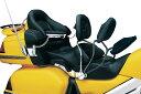 クリアキン ライダーバックレスト1ケ GL1800 01-10