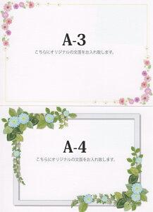 A-3&A-4