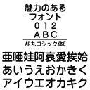 【ポイント10倍】【35分でお届け】AR丸ゴシック体E MAC版TrueTypeフォント【C&G】【ダウンロード版】