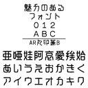 【ポイント10倍】【35分でお届け】AR丸印篆B (Windows版 TrueTypeフォントJIS2004字形対応版) 【C&G】【ダウンロード版】