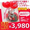 クリスマス プレゼント バルーン 花 送料無料 【クリスマス...