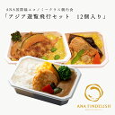 【 ANA's Sky Kitchen 】おうちで旅気分!!ANA国際線エコノミークラス機内食 アジア路線メインディッシュ アジア遊覧飛行セット 12個入り