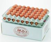朝採れ!! 岐阜県産 醍醐卵 90個入り Mサイズの商品画像