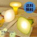 充電式 LEDライト [懐中電灯 常夜灯 照明 LEDライト ledランプ 節電 間接照明 コードレス 防災グッズ]