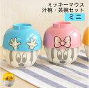 ディズニー ミッキー・ミニー まんぷく ミッキーマウス ミニーマウス
