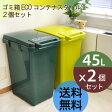 ゴミ箱 45l eco コンテナスタイル 2個セット 日本製[ ごみ箱 45リットル ダストボックス キッチン 分別 スリム ペダル おしゃれ ふた付き フタ付き 屋外 ペダル式 大容量 かわいい おしゃれ エココンテナスタイル 送料無料 box]