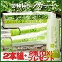 ナプラケアテクトOGカラー【サロン用】カラーリングセット☆1剤2本組&2剤付きこれだけでサロンのカラーリングができるお得なセット!