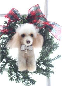 うちの子トピアリー、あなたの、わんちゃん、ねこちゃん本物そっくりに手作りいたします。世界でひとつのクリスマスプレゼントに