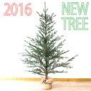 クリスマスツリー 160cm 送料無料【Hogewoning/ホーゲボーニング】
