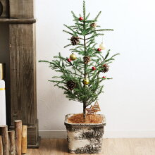 クリスマス ミニツリー(オーナメント付き) L