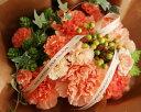 2013母の日 魔法のお花(ベビーリーフ3種のタネ付)【送料無料】