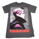 /DAVID BOWIE デヴィッドボウイLOW PROFILE オフィシャル アーティストTシャツ / 2枚までメール便対応可 / あす楽対応