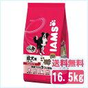 アイムス [IAMS] 1歳〜6歳用 成犬用 ラム&ライス 16.5kg ブリーダーパック