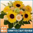 お誕生日 花 バラのアレンジ 花束 誕生日 結婚祝い 3000円コース 即日発送 【送料無料 】向日葵 ヒマワリ