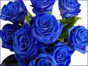 青色のバラブルーローズ 花束最小購入単位10本?最大50本まで【楽ギフ_包装】【05P14Jan11】