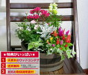 季節のお花の寄せ植えミニガーデン