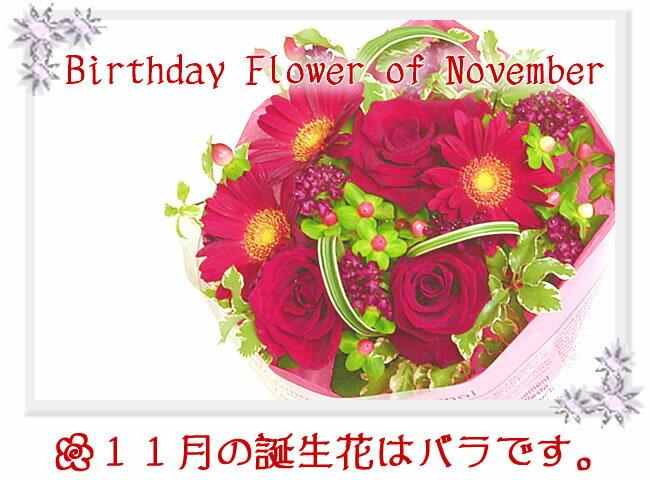 【あす楽16時まで受付】(スカーレット)誕生花...の紹介画像2